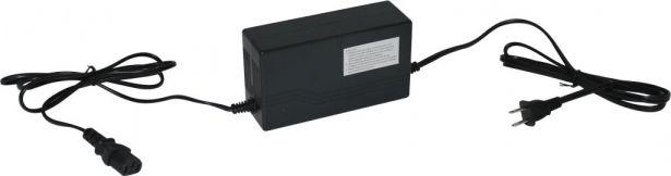 Charger - 48V, 1.6A, C13 Plug